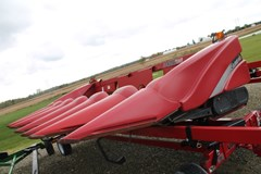 Header-Corn For Sale 2009 Case IH 3406