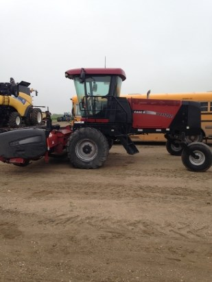 2006 Case WDX 1202 Windrower-Self Propelled For Sale
