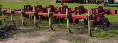 Field Cultivator For Sale:  Other Lilliston 6 RW Veg. Cultv.