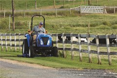 Tractor - Compact For Sale:  New Holland BOOMER 40