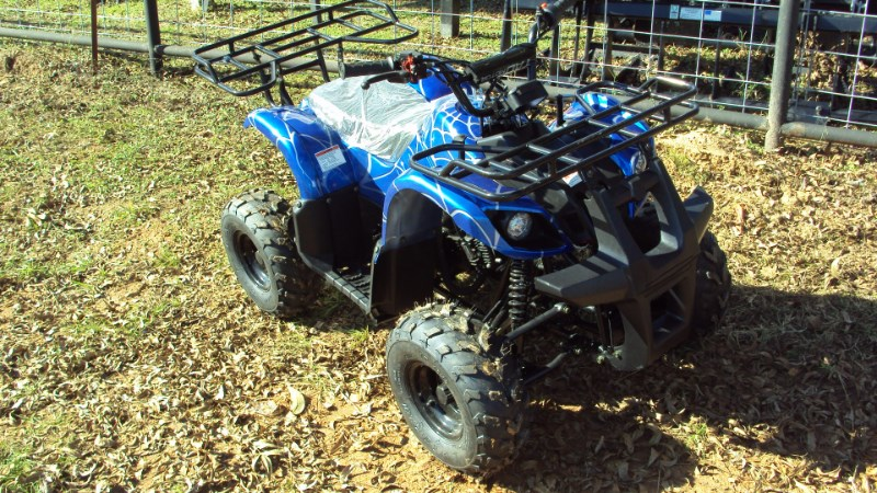 Other NEW 125cc Four wheeler ATV For Sale