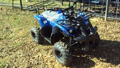 ATV For Sale:  Other NEW 125cc Four wheeler