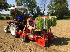 Planter For Sale 2019 Checci & Magli UNITRIUM 2 ROW