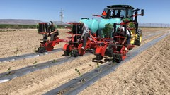 Planter For Sale 2018 Checchi & Magli WOLF TRANSPLANTER 1 ROW 1 CUP HEMP TRANSPLANTER