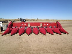 Header-Corn For Sale 2008 Case IH 3408