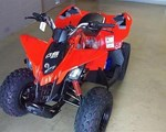 ATV For Sale: 2019 Can-Am 2019 DS90 4-STROKE RED SKU # 3CKC
