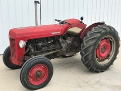 Tractor For Sale 1955 Massey Ferguson TO35 , 37 HP