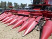 Header-Corn For Sale:  2016 Case IH 4412F