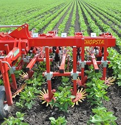 Row Crop Cultivator For Sale 2021 Other CHOPSTAR 6R30