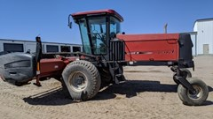 Windrower-Self Propelled For Sale 2002 Case IH WDX1101
