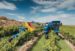 Grape Harvester-Self Propelled For Sale 2018 New Holland 9090XE , 175 HP