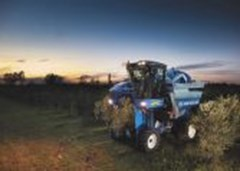 Olive Harvester For Sale 2020 New Holland 9090XO