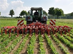 Row Crop Cultivator For Sale 2021 Other CHOPSTAR 8R30
