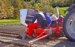 Planter For Sale 2021 Checchi & Magli F300L 4 Row Potato Planter